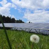 ソーラーシェアリングのメリット・デメリット!将来的な収益はいくら?