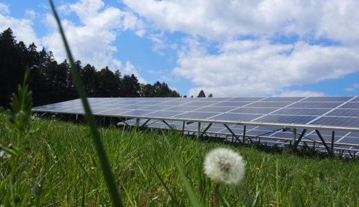 """【次世代型農業】ソーラーシェアリングとは?収入が""""2倍以上""""増える方法"""