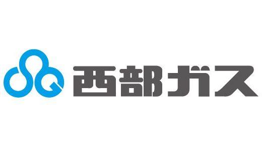 【西武ガスの電気】埼玉県民におすすめ!ガスと電気をセットでお得